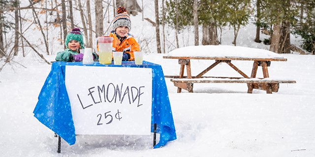 small business lemonade stand